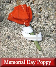 memorial-day-poppy